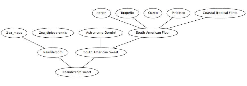 pedigree of neandersweet corn